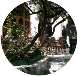 cafe-de-la-mosquee-de-paris_terrasse