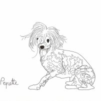 Pepette © Marie-Amélie Porcher