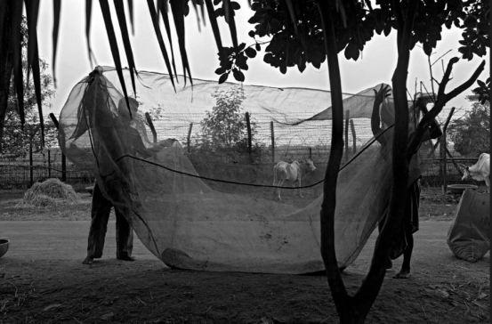 Inde, 25 mai 2013 © Gael Turine