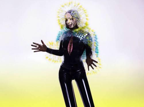 Vulnicura - Björk. Photo © Inez & Vinoodh