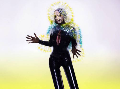 Vulnicura - Björk. Photo © Inez & Vinoodh