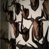 Vue de l'exposition Créatures © Annaëlle Veyrard